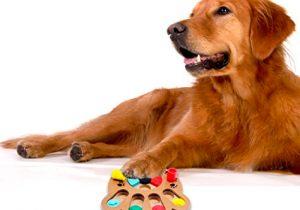 juegos para perros